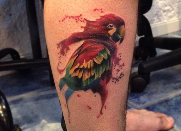 16 herrliche Papagei Tattoos und ihre Bedeutungen