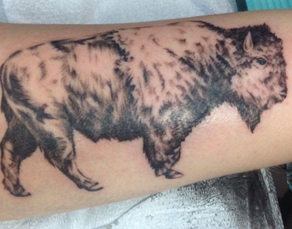 Bison Tattoo Design auf dem Arm