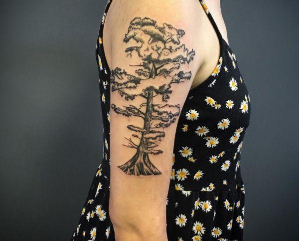 Cypress Baum am Oberarm