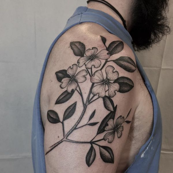 Blüten-Hartriegel Tattoo Design am Oberarm