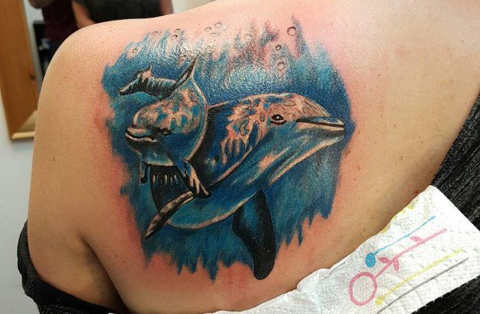 Zwei Delphin am Rücken