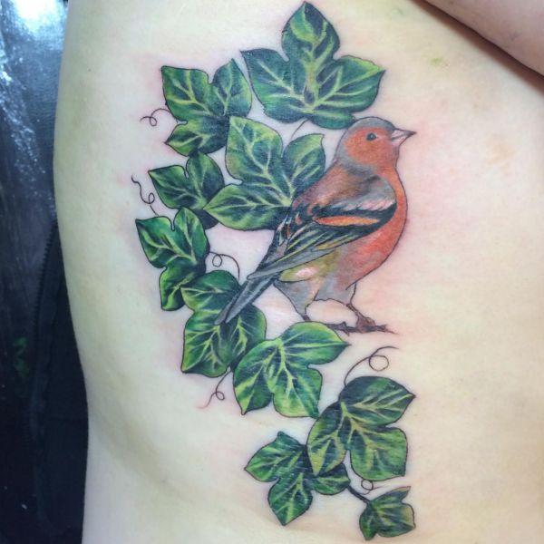 Efeu Tattoo Design mit Vogel am Rippenbogen