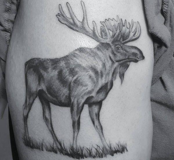 Tattoo Elch Design am Rippenbogen