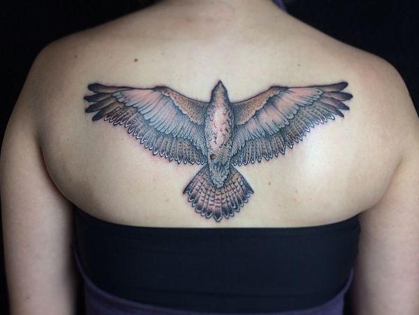Falke Tattoo am Rücken für Frau