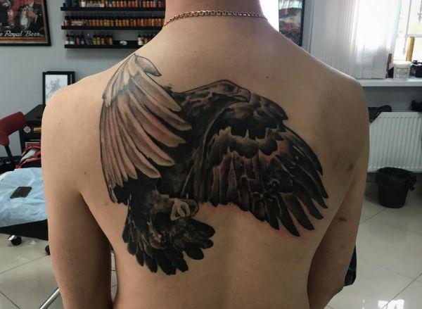 Falke Tattoo am Rücken