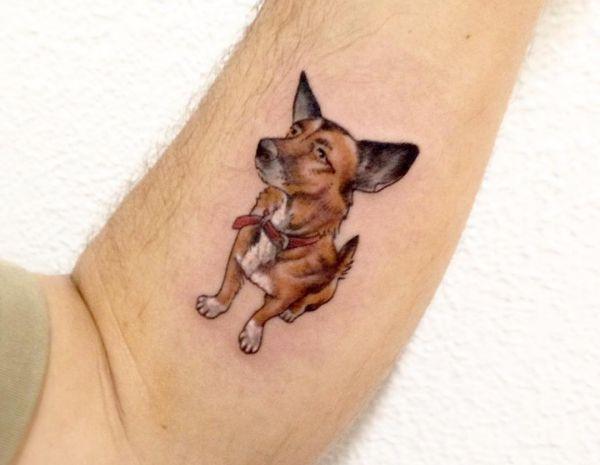 Kleine Hunde am Unterarm