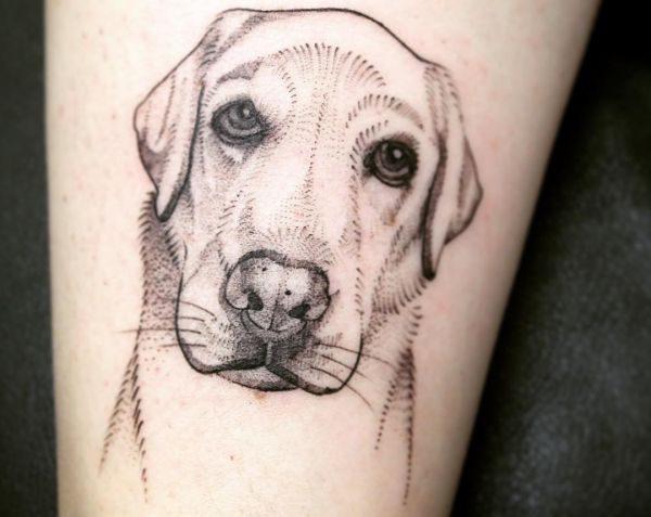 Hunde am Unterschenkel Schwarzweiß