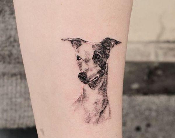 Hunde am Unterschenkel schwarz und weiß