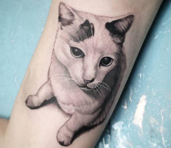 Portrait Katzen Design am Unterarm