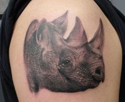 Nashorn Tattoo Designs mit Bedeutungen – 26 Ideen