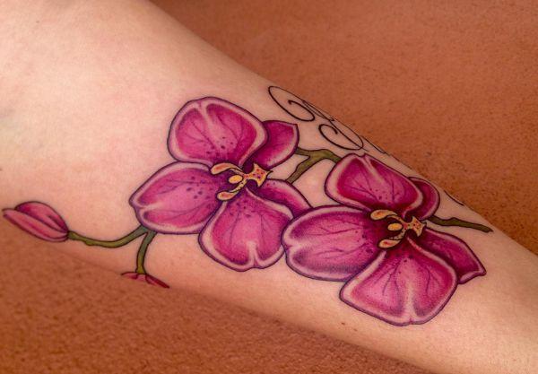 Orchidee Rose Tattoo Design am Unterarm