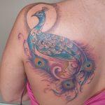 21 sehr schöne Pfau Tattoos – als Symbol für Schönheit
