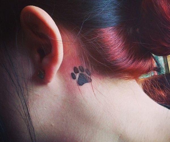 Katzenpfoten Design hinter dem Ohr