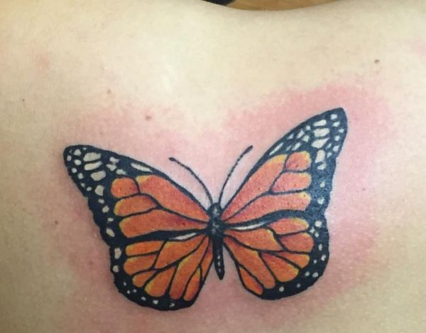Monarch Schmetterling Tattoo am Schulterblatt
