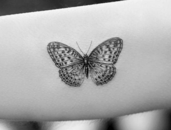 Tattoo Schmetterling Motiv 3d Schmetterling 1
