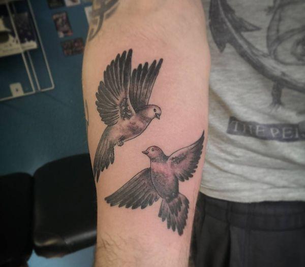 Zwei Tauben am Unterarm